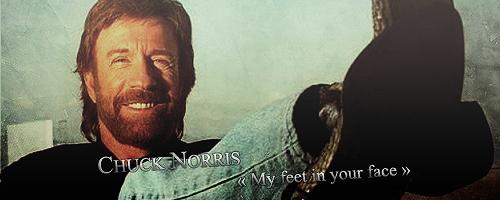 Surprise Motherfucka'.  Norris10