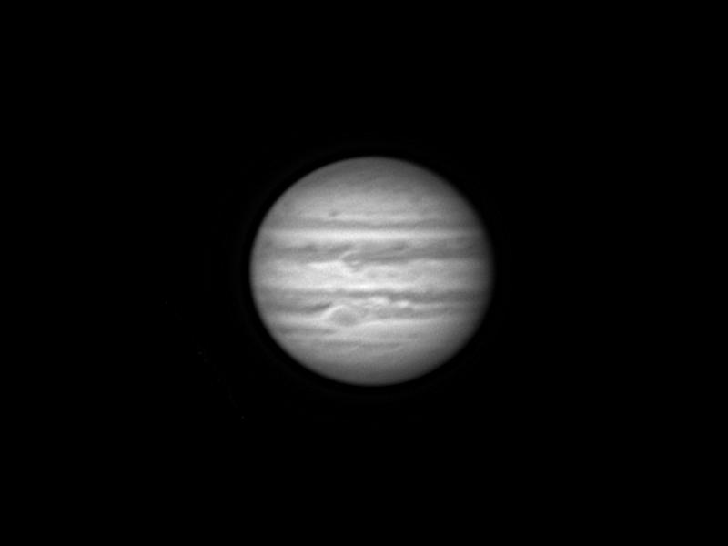 Premiers shoots de Jupiter Jupite25