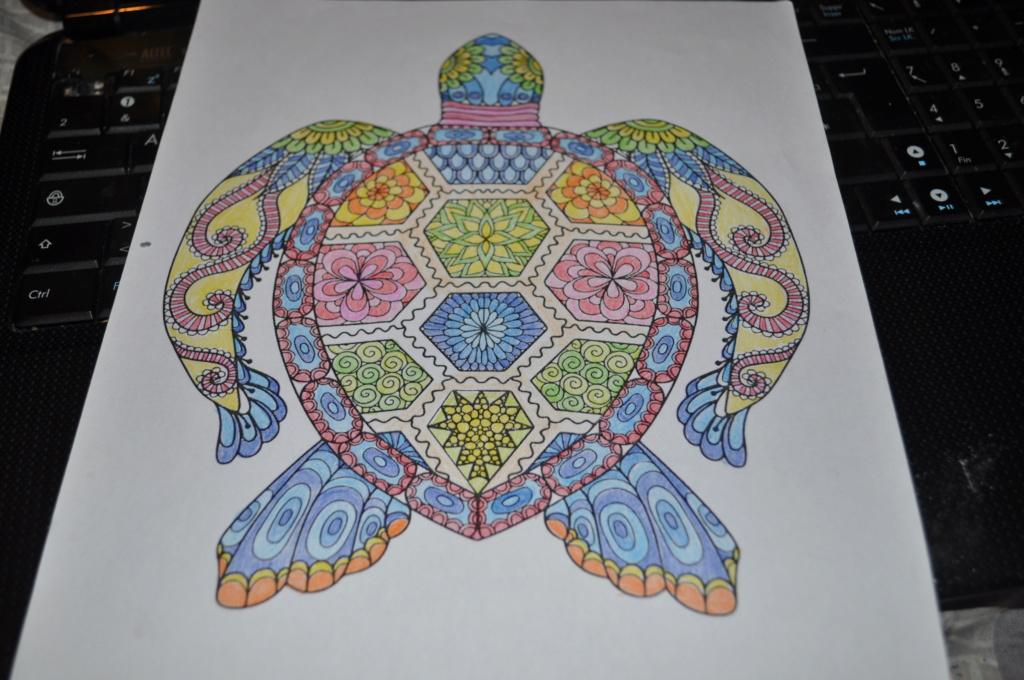 mandalas crayons de couleurs Mandal11