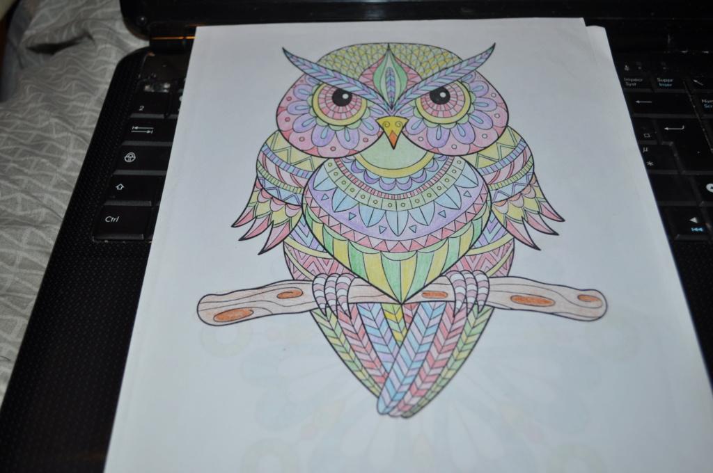mandalas crayons de couleurs Mandal13