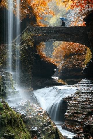 Un jardin pour la cascade Tumblr15