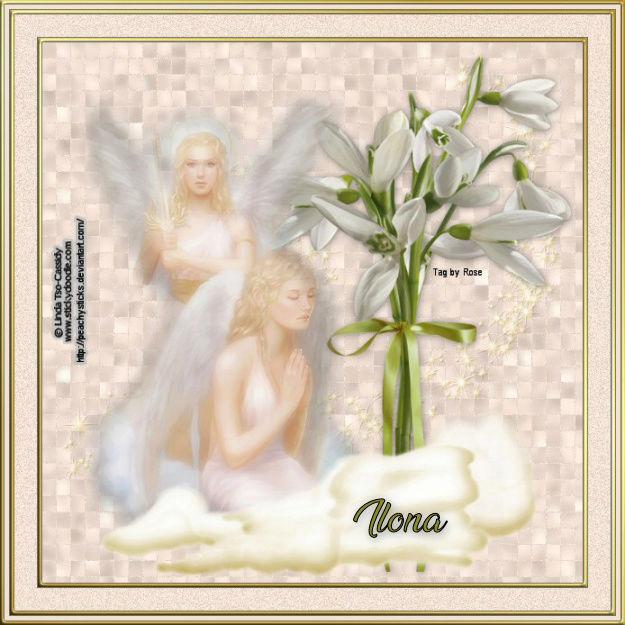 ANGELS/FAIRIES TAGS Angel210