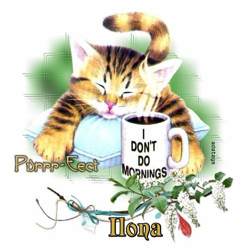 COFFEE/TEA TAGS - Page 2 Coffee26