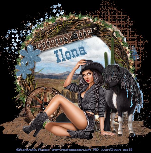 COWBOY/COWGIRL TAGS - Page 2 Cowgir68