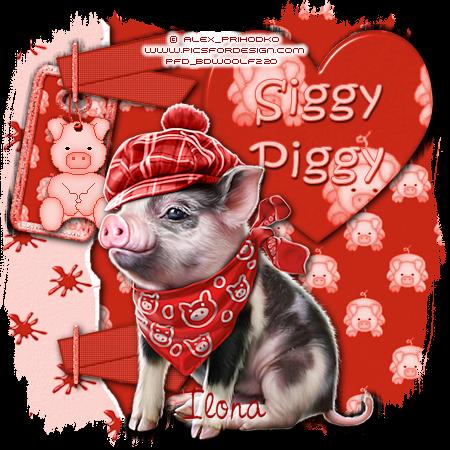 ARE YOU A SIGGY PIGGY? Siggy152