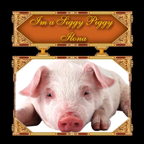 ARE YOU A SIGGY PIGGY? - Page 2 Siggy_12