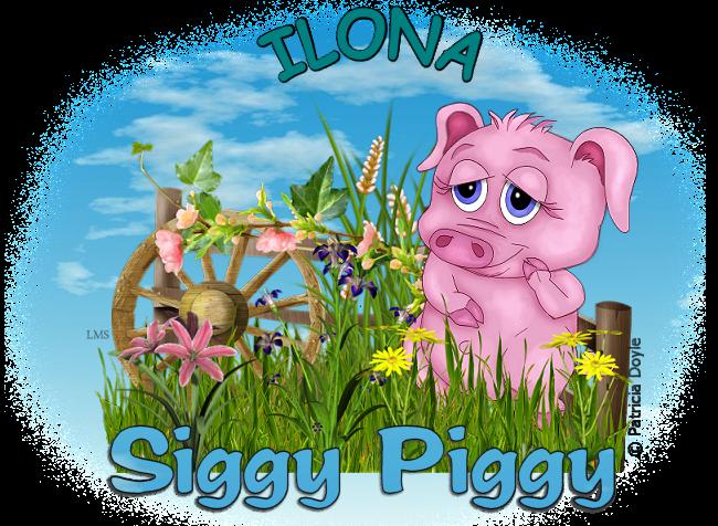 ARE YOU A SIGGY PIGGY? - Page 2 Siggy_38