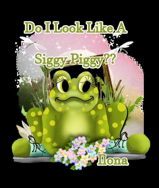 ARE YOU A SIGGY PIGGY? - Page 2 Siggy_41