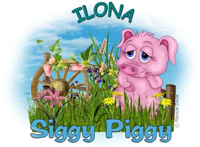 ARE YOU A SIGGY PIGGY? - Page 3 Siggy_44