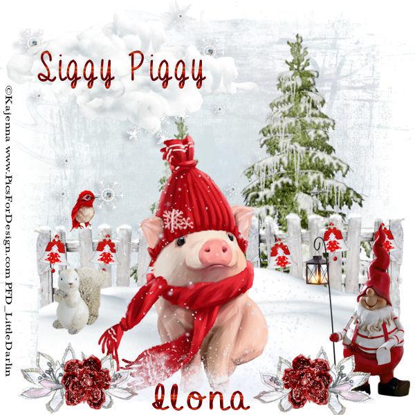 ARE YOU A SIGGY PIGGY? Siggyp84