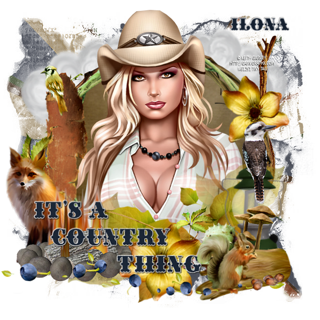 COWBOY/COWGIRL TAGS Supc1016