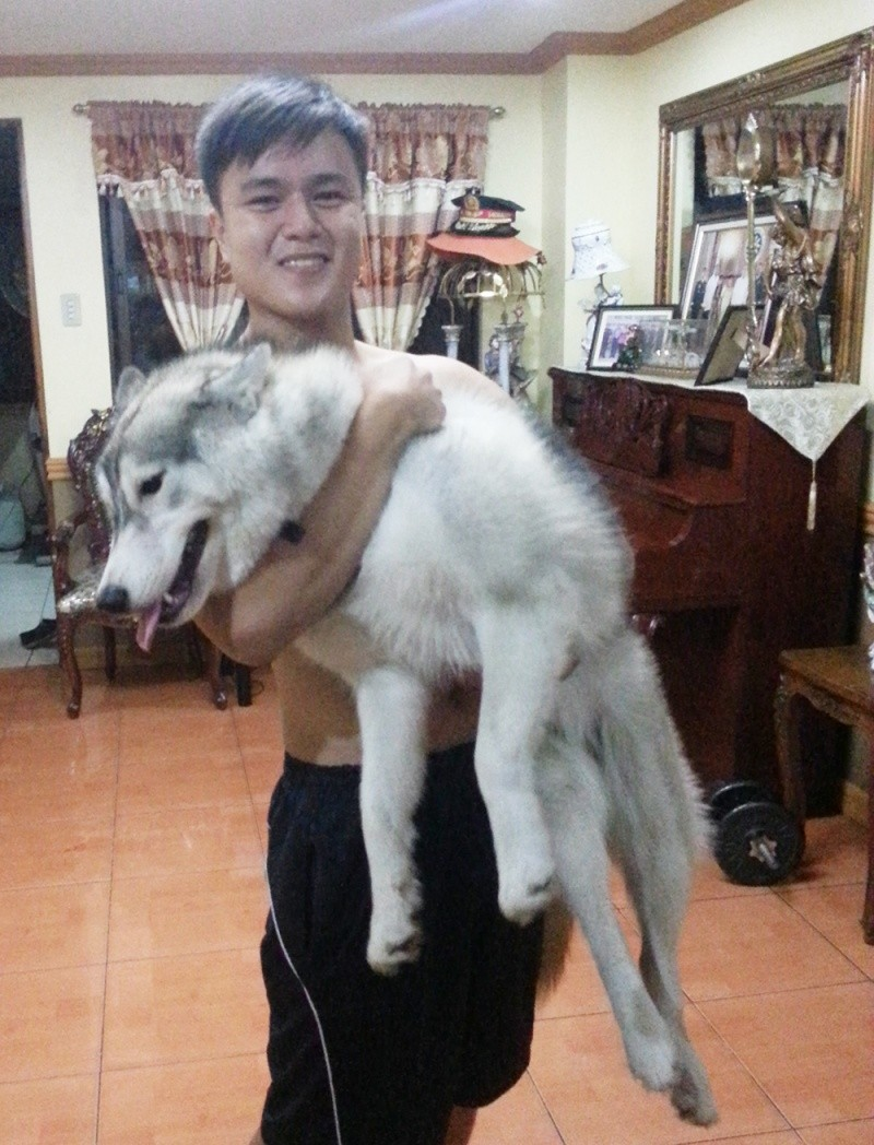 Raven and Erika, My Huskies :) 2013-010