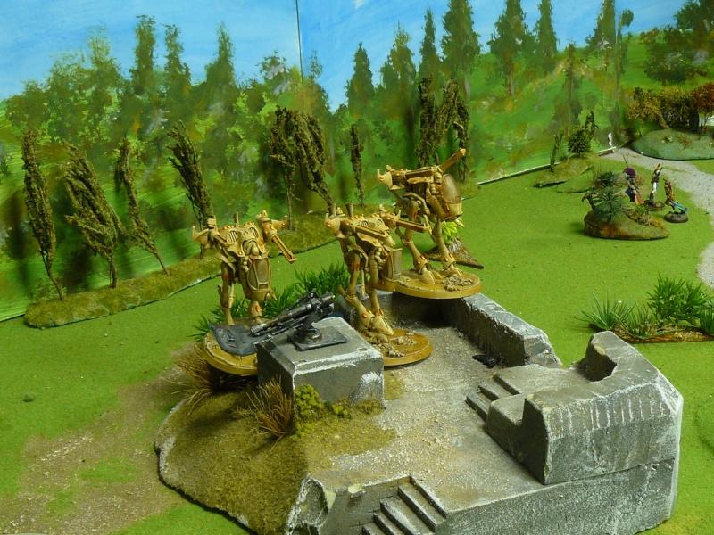 Warhammer 40K. Galerie de Batailles ! P1180137