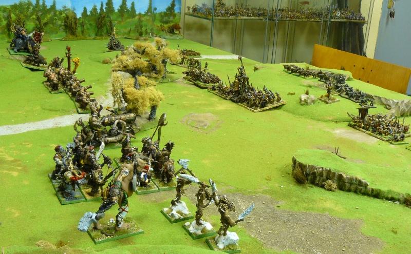 Warhammer Fantasy, Galerie de Batailles P1180555