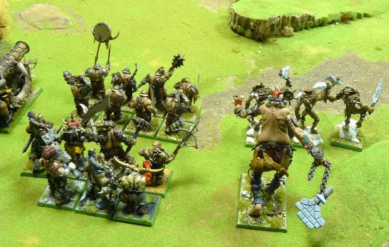 Warhammer Fantasy, Galerie de Batailles P1180556
