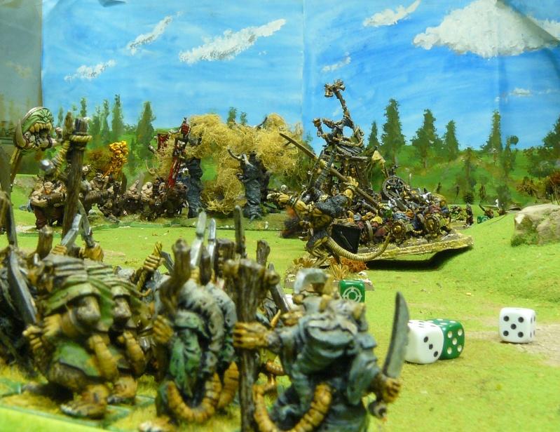 Warhammer Fantasy, Galerie de Batailles P1180558