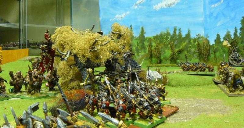 Warhammer Fantasy, Galerie de Batailles P1180559