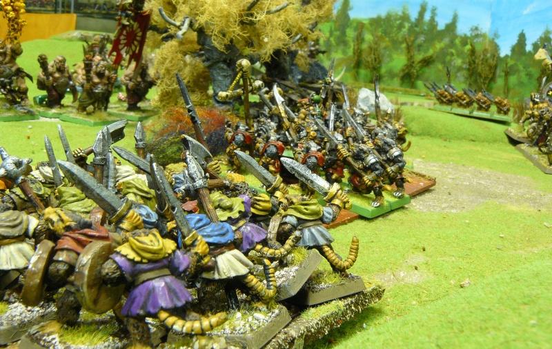 Warhammer Fantasy, Galerie de Batailles P1180560