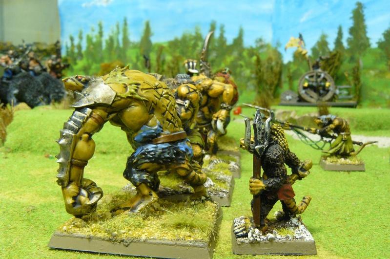 Warhammer Fantasy, Galerie de Batailles P1180561