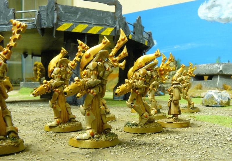 Warhammer 40K. Galerie de Batailles ! P1180728
