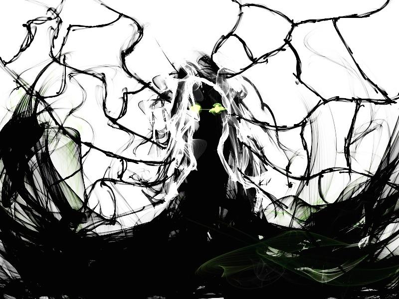 L'Ombre de l'Araignée. [PV Nephila Edulis] Tumblr11