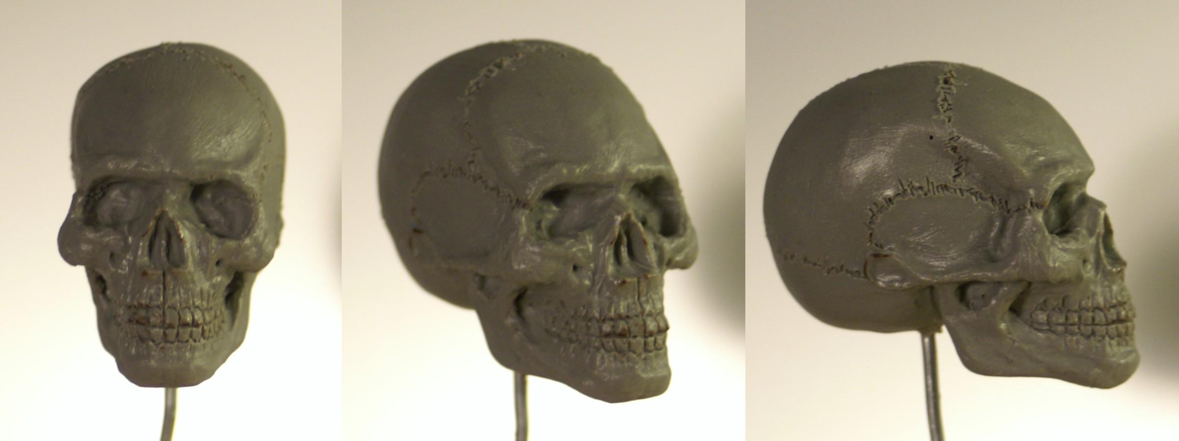 demostox sculpt Crane10