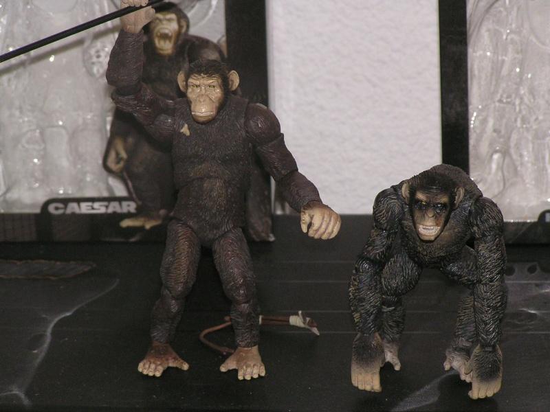 Planéte des singes les origines :Hiya toys,Neca et autres... Beast_22