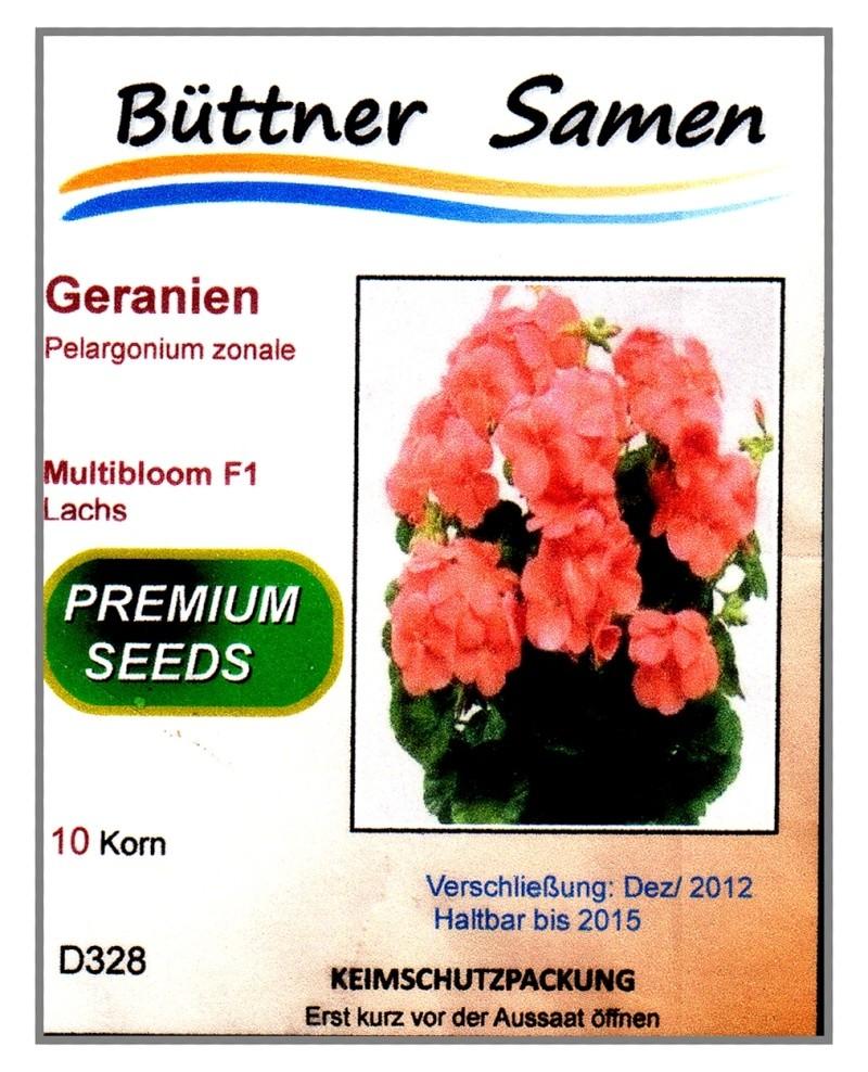 Pelargonium - Pelargonien - alle nichtsukkulenten Arten und Sorten - Aussaat - Stecklinge - Seite 6 Bild_g10