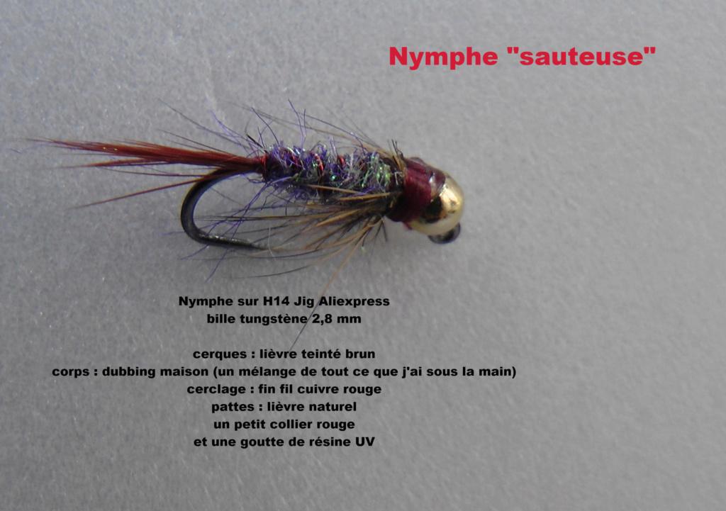Janvier 2019 :votre mouche pour l'ouverture !! - Page 2 H6250010