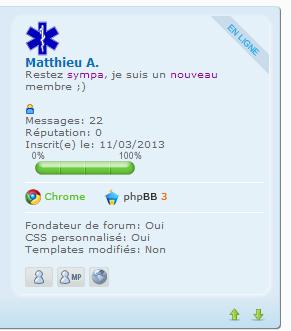 """Mettre """"en ligne"""" dans le cadre du mini profil du message Sans_t11"""
