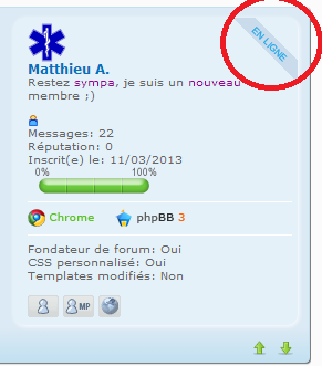 """Mettre """"en ligne"""" dans le cadre du mini profil du message Sans_t12"""