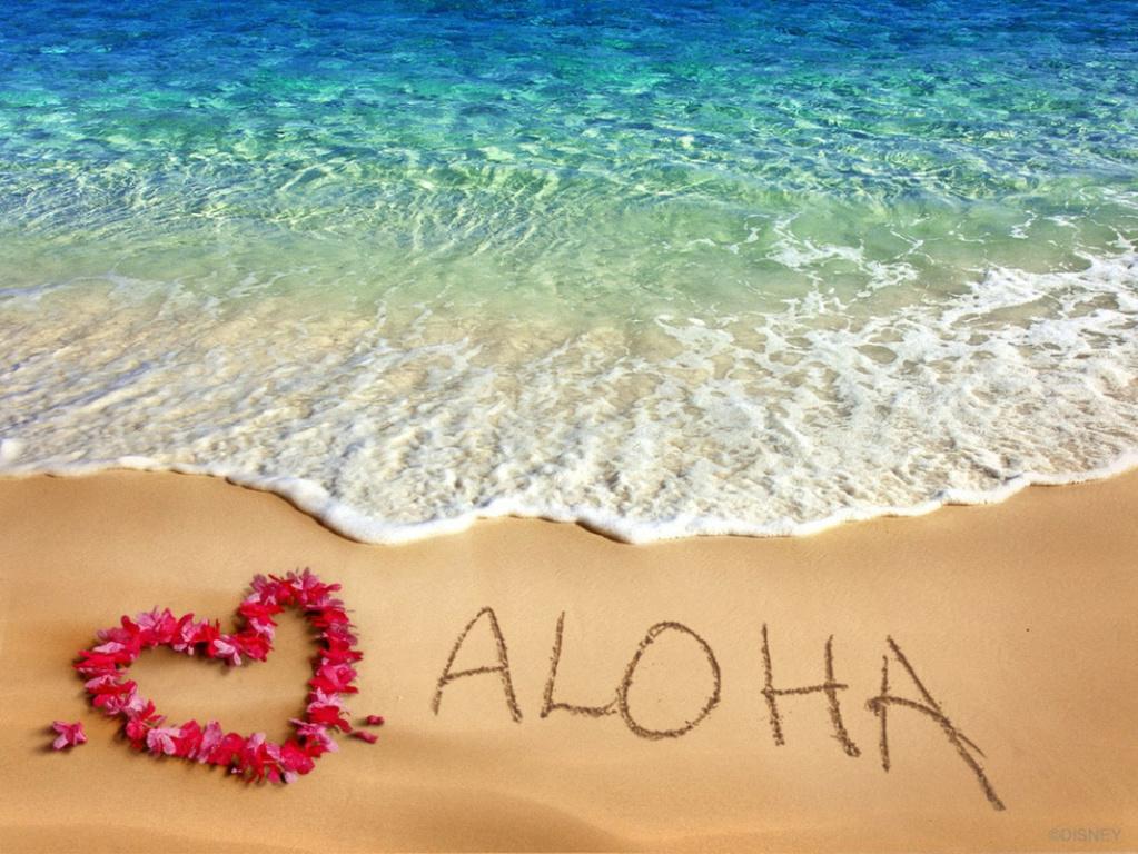 Triste nouvelle... Aloha... - Page 2 13118311
