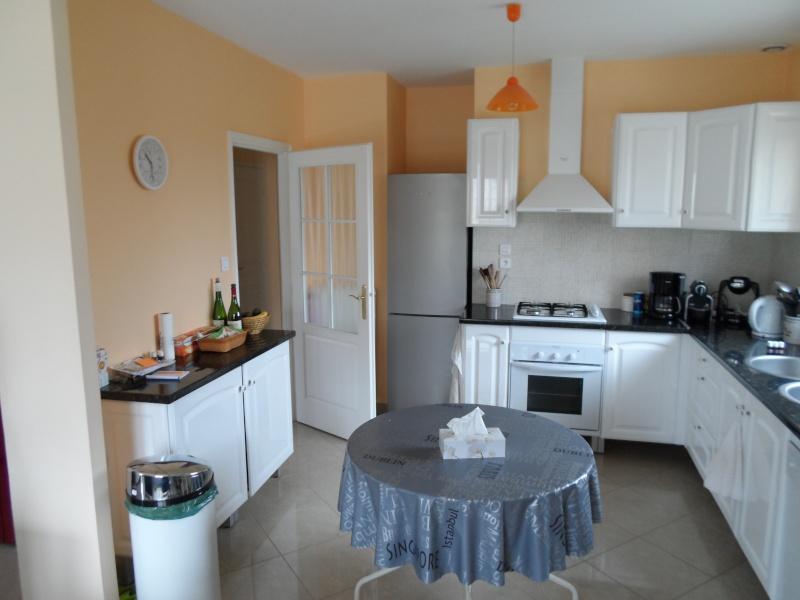 besoin de conseils idées peintures pour nouvelle maison en location Sam_0819