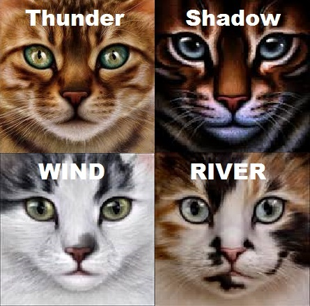The Warrior Cats The_cl10