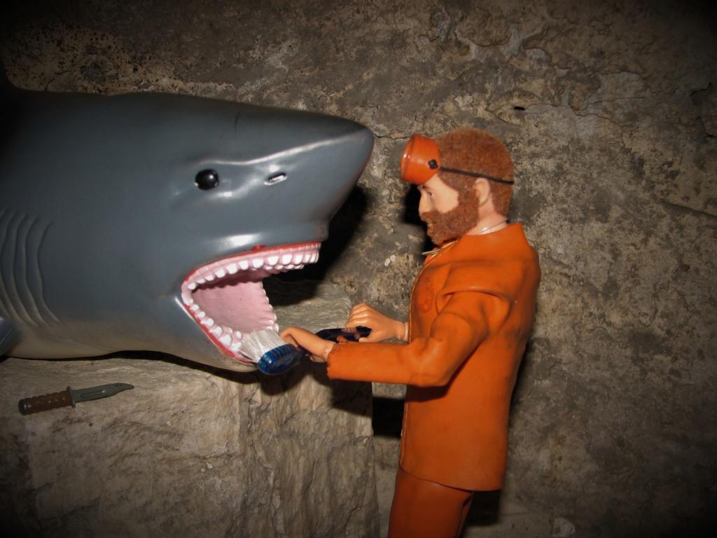 It's a Bigger Shark! Img_9131