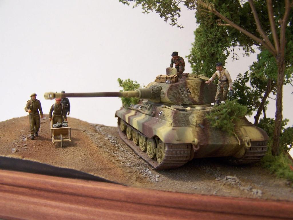 Le Tigre,les Tommies et la brouette en Normandie  100_0424