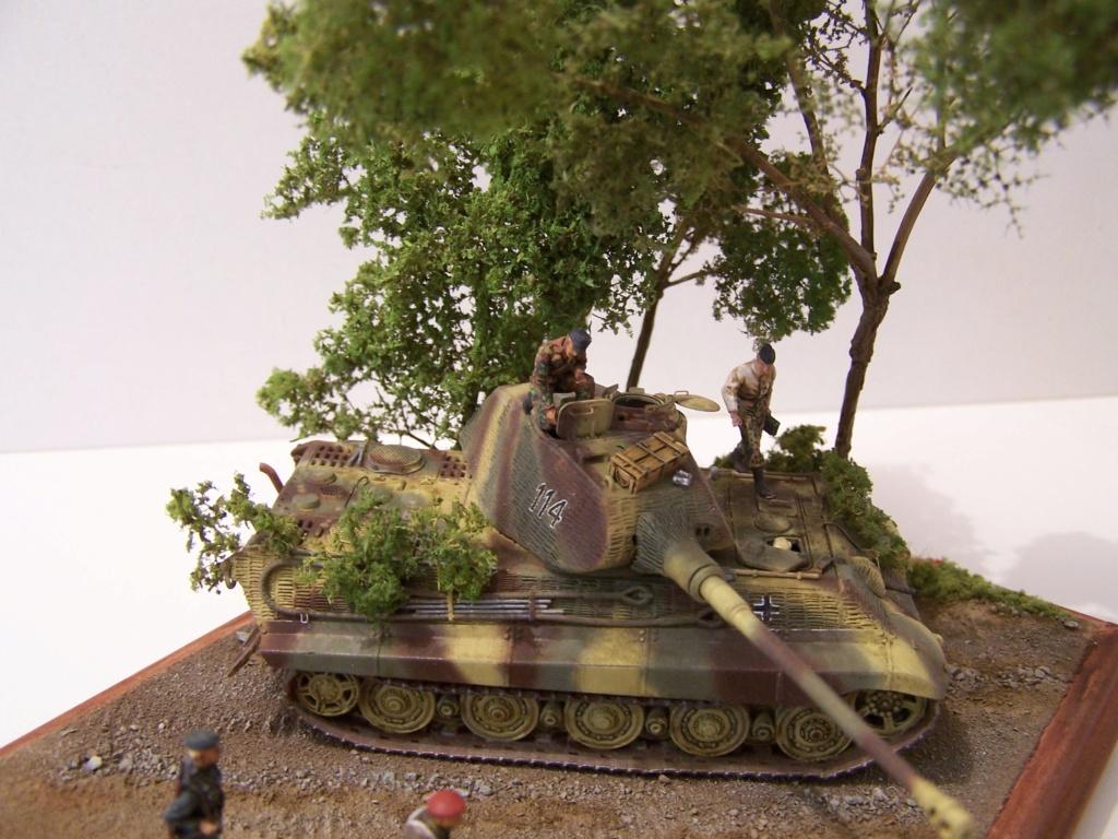 Le Tigre,les Tommies et la brouette en Normandie  100_0428