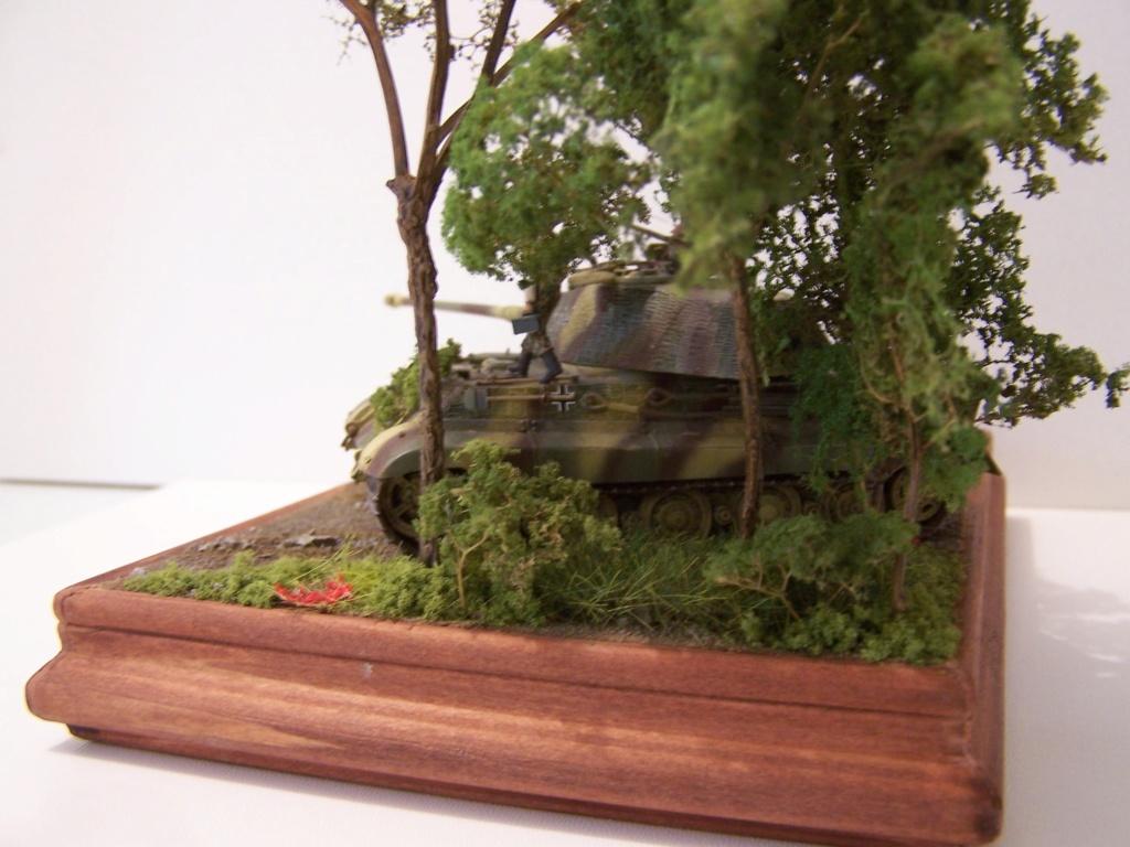 Le Tigre,les Tommies et la brouette en Normandie  100_0429