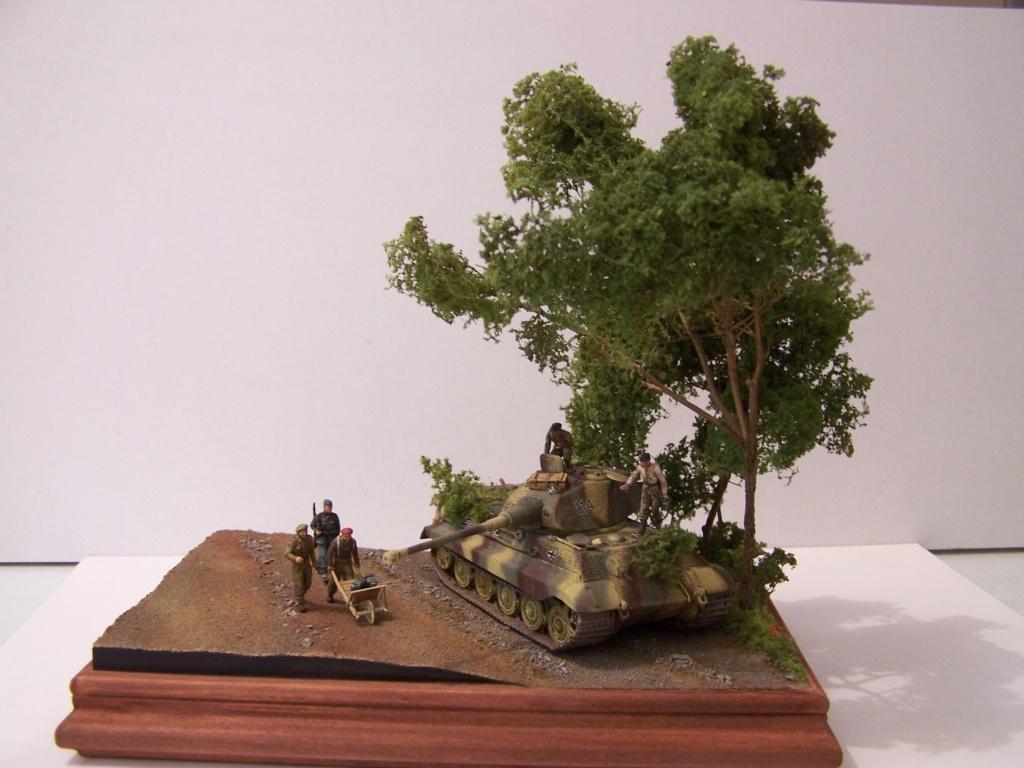 Le Tigre,les Tommies et la brouette en Normandie  100_0433