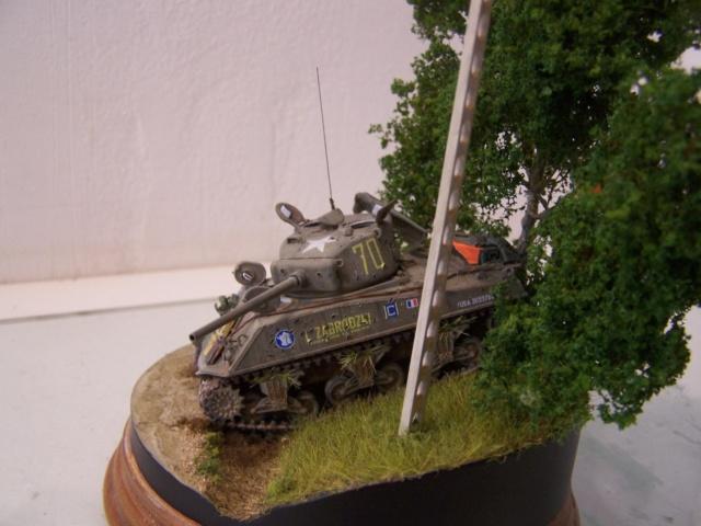 Sherman m4a3 76 mm  Lt Zagrodski - Page 2 100_1252