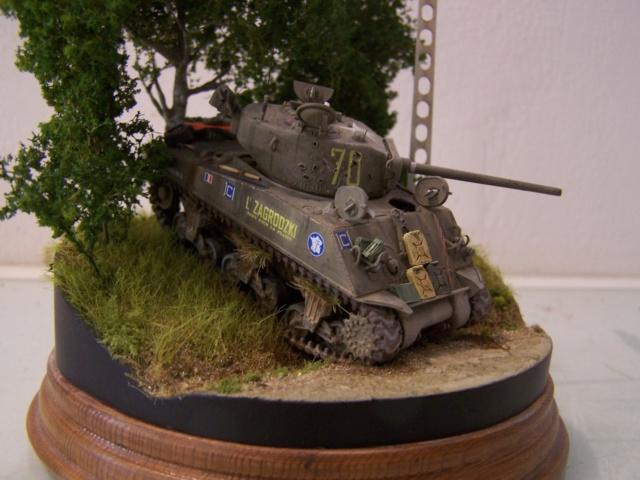 Sherman m4a3 76 mm  Lt Zagrodski - Page 2 100_1253