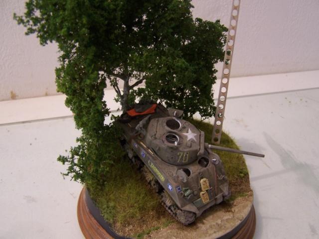 Sherman m4a3 76 mm  Lt Zagrodski - Page 2 100_1254