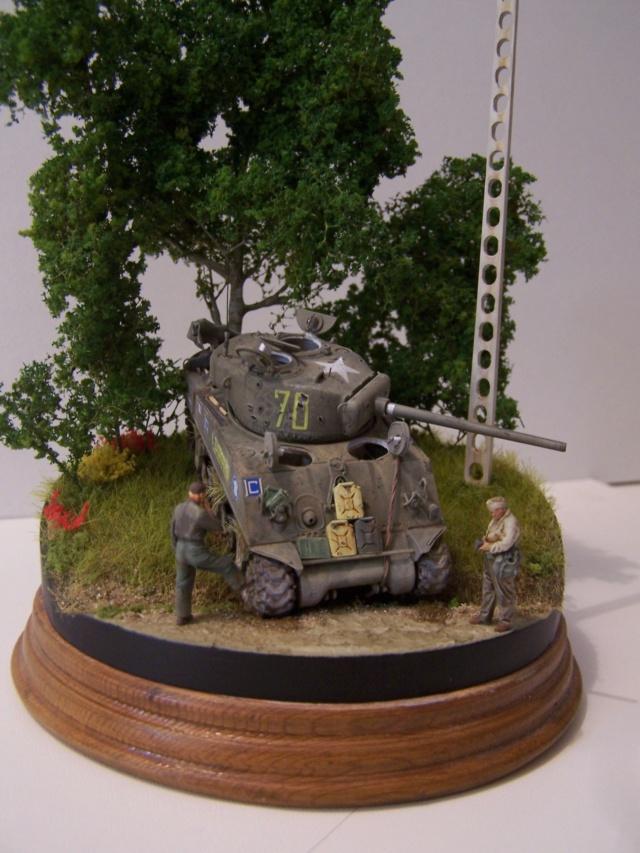 Sherman m4a3 76 mm  Lt Zagrodski - Page 2 100_1256
