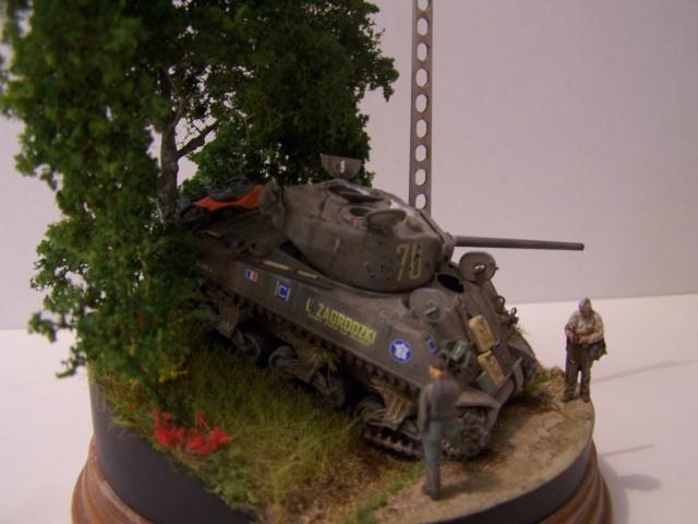 Sherman m4a3 76 mm  Lt Zagrodski - Page 2 100_1258