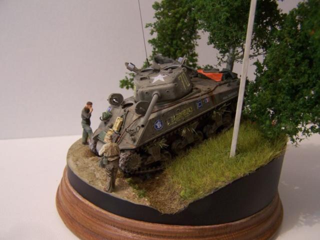 Sherman m4a3 76 mm  Lt Zagrodski - Page 2 100_1259