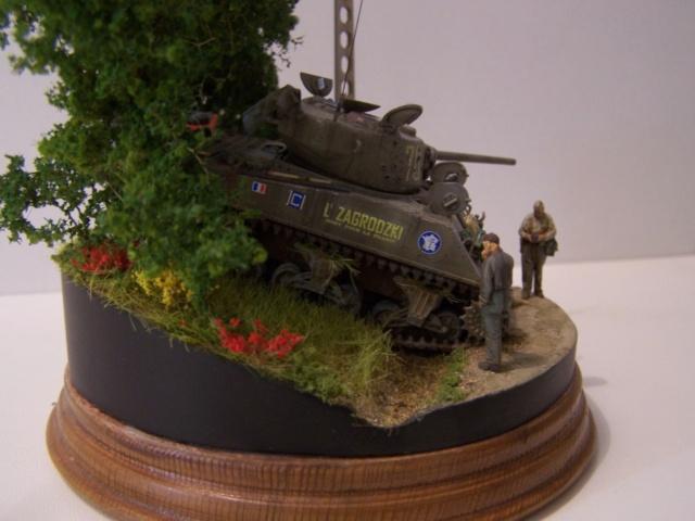 Sherman m4a3 76 mm  Lt Zagrodski - Page 2 100_1260