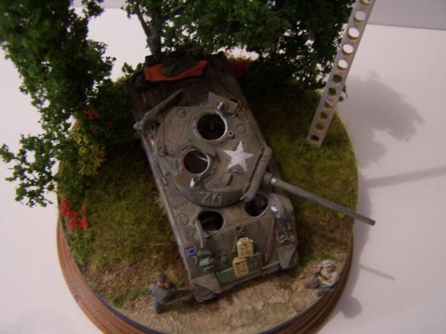 Sherman m4a3 76 mm  Lt Zagrodski - Page 2 100_1261