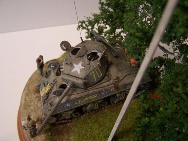 Sherman m4a3 76 mm  Lt Zagrodski - Page 2 100_1262
