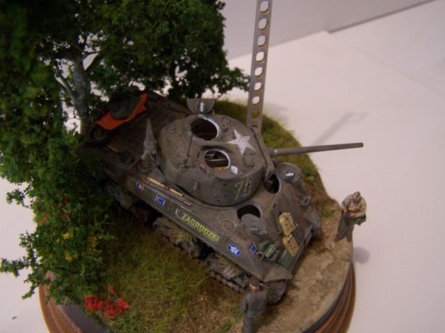 Sherman m4a3 76 mm  Lt Zagrodski - Page 2 100_1263