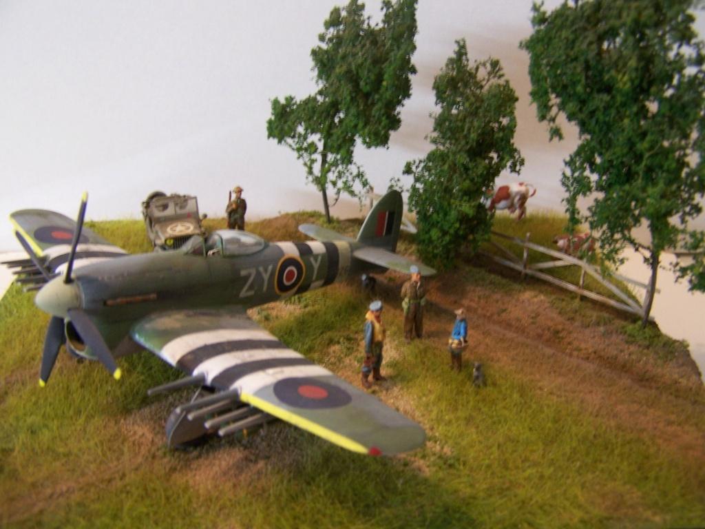 Tueurs de chars  en Normandie ....  100_1279